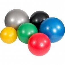 Mambo MAX AB sporto kamuolys (su pompa)